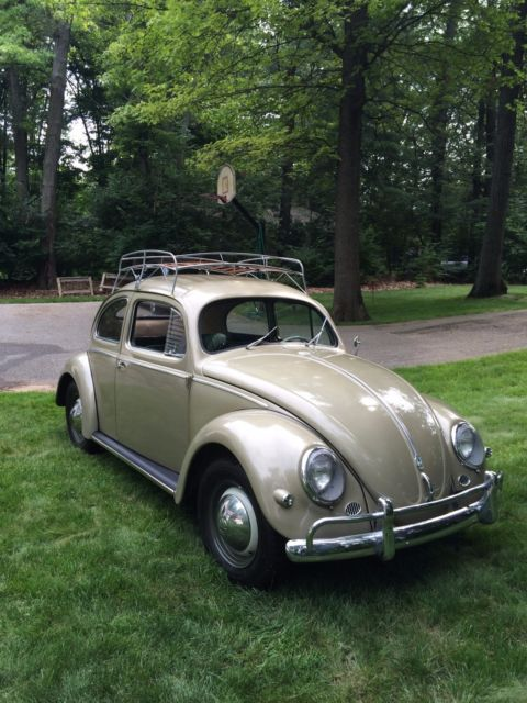 1957 vw bug oval window betel for sale in united states for 1957 oval window vw bug