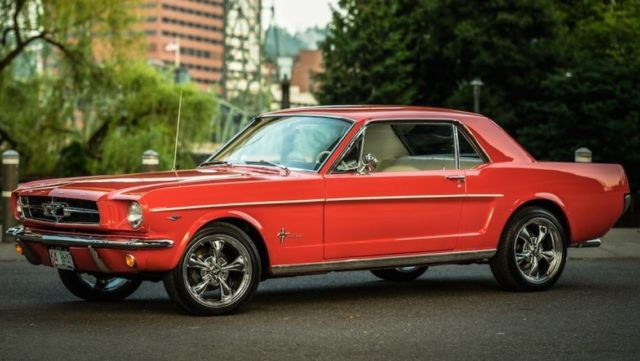 1964 1 2 ford mustang for sale in middletown new york united states. Black Bedroom Furniture Sets. Home Design Ideas