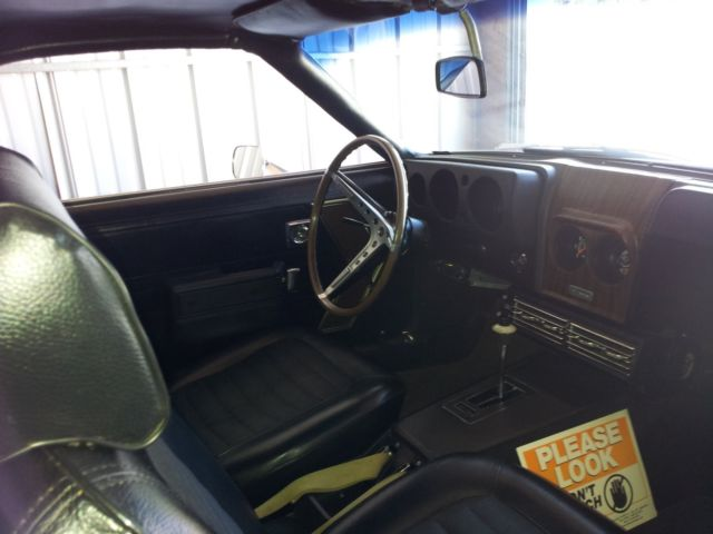 1968 AMX 390cu, RALLY GAUGE & GO Pack, OEM Chrome Wheels, 2 Owner